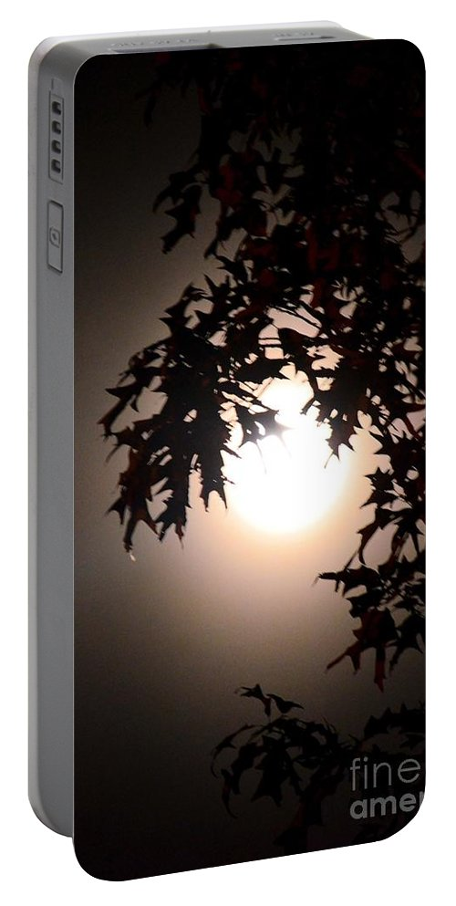 Enchanted By Moonlight Portable Battery Charger featuring the photograph Enchanted By Moonlight by Maria Urso