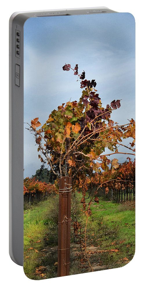 Vineyards Portable Battery Charger featuring the photograph End Of The Vineyard Row by Karen W Meyer