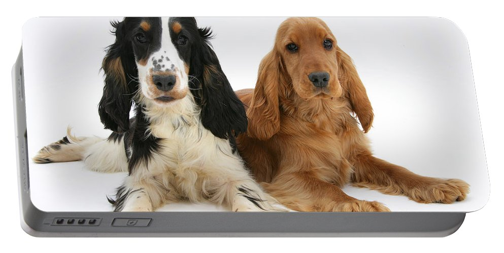 Animal Portable Battery Charger featuring the photograph English Cocker Spaniels by Mark Taylor