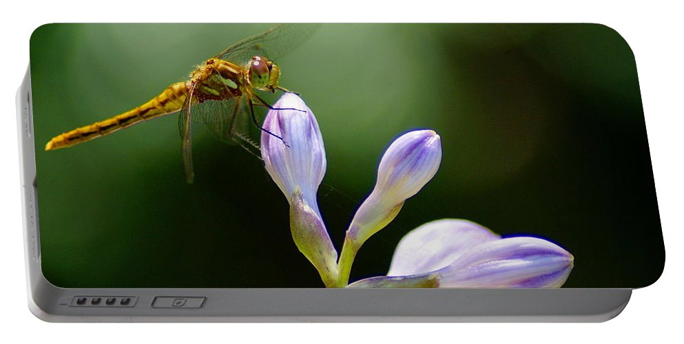 Dragonflies Portable Battery Charger featuring the photograph Enjoying The Moments Of The Day by Ben Upham III