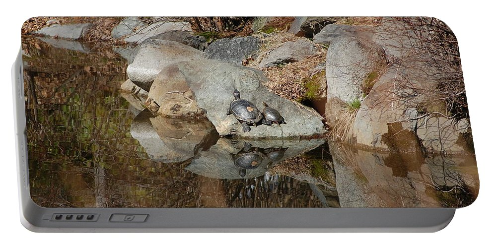 Water Portable Battery Charger featuring the photograph Enjoying The Sun by Kari McDonald