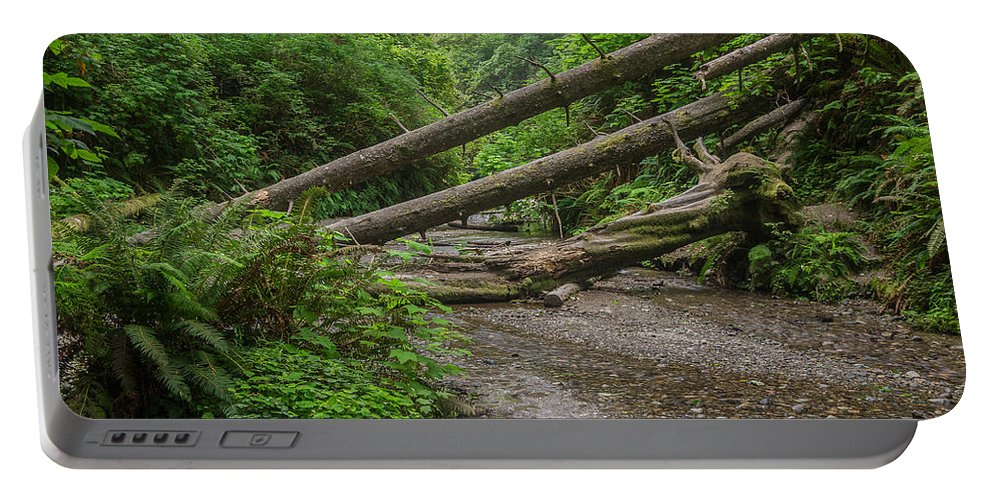 Fern Canyon Portable Battery Charger featuring the photograph Entrance To Fern Canyon by Greg Nyquist