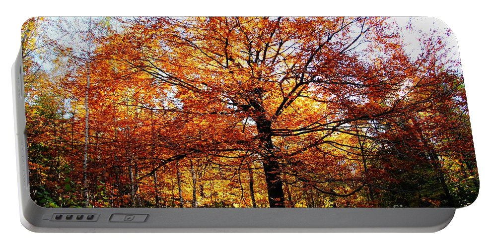 Eye Of The Forest Portable Battery Charger featuring the photograph Eye Of The Forest by Mariola Bitner