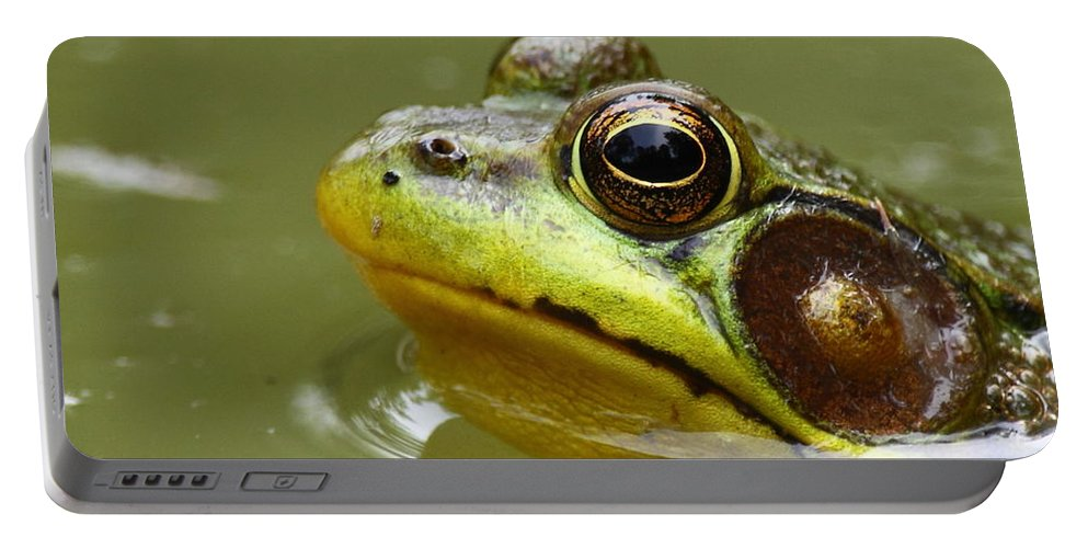 Frog Portable Battery Charger featuring the photograph Face Of A Prince by Bruce J Robinson
