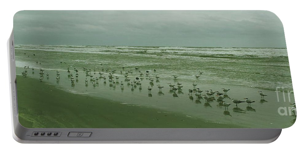 Beach Portable Battery Charger featuring the photograph Facing The Wind by Donna Brown