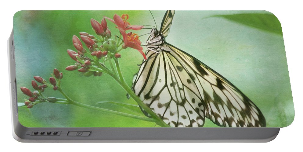 Butterfly Portable Battery Charger featuring the photograph Fairy Dance by Kim Hojnacki