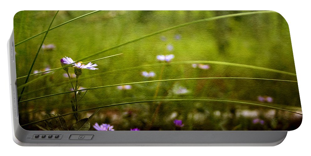 Meadow Portable Battery Charger featuring the photograph Fairy Meadow by Ellen Heaverlo