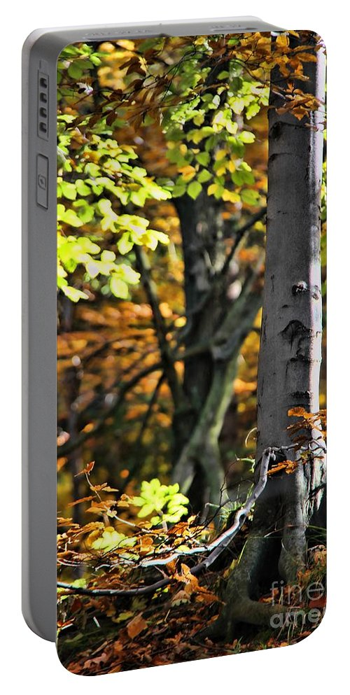 Fall Beauty Portable Battery Charger featuring the photograph Fall Beauty by Mariola Bitner