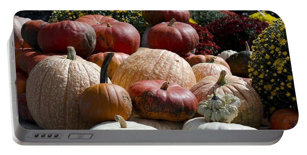 Portable Battery Charger featuring the photograph Fall Harvest Colorful Gourds 7965 by Terri Winkler
