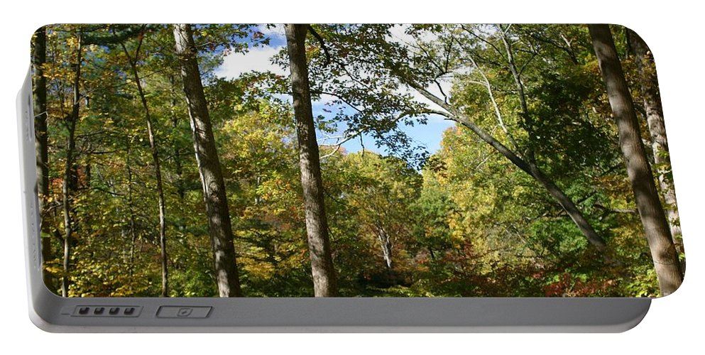 Forest Portable Battery Charger featuring the photograph Fall In The Forest by Living Color Photography Lorraine Lynch