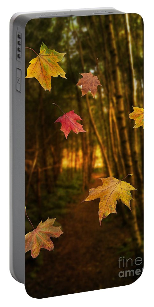 Autumn Portable Battery Charger featuring the photograph Falling Leaves by Amanda Elwell