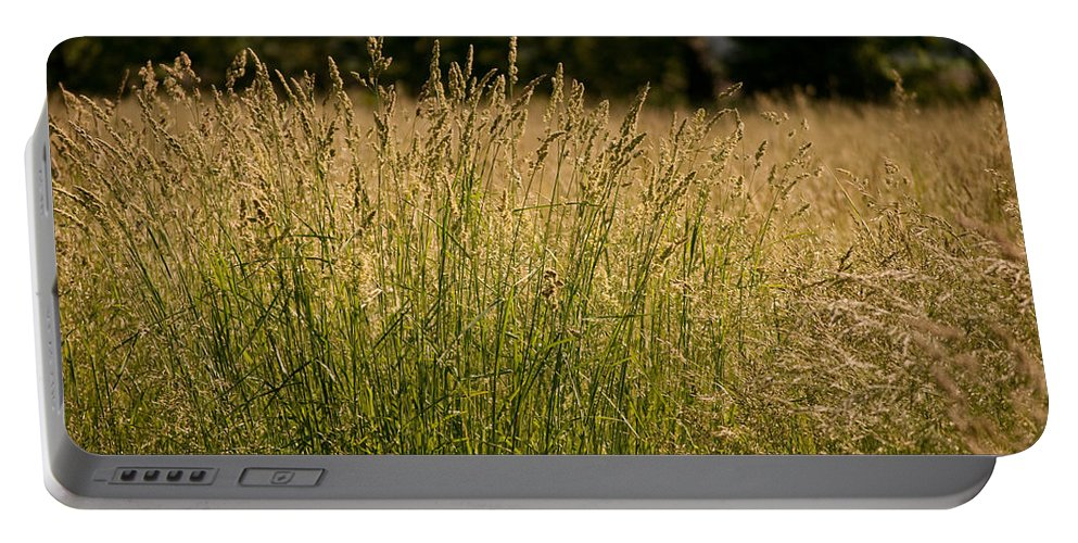 Nature Portable Battery Charger featuring the photograph Fallow Field by Paulette B Wright