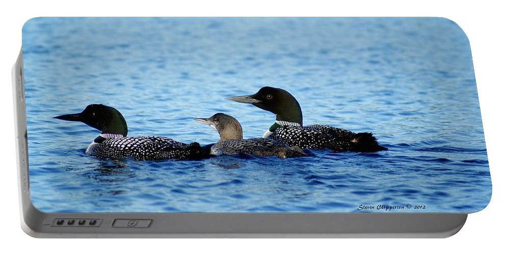 Loon Portable Battery Charger featuring the photograph Family Swim 3 by Steven Clipperton