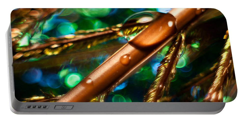 Feather Portable Battery Charger featuring the photograph Feather Abstract by Lauri Novak