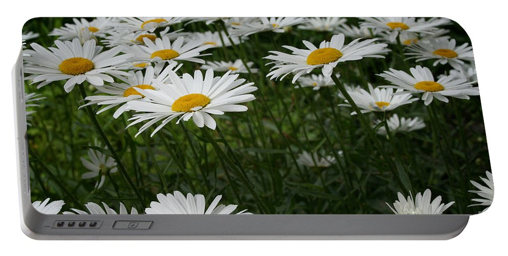 Minnesota Portable Battery Charger featuring the photograph Field Daisies by Susan Herber