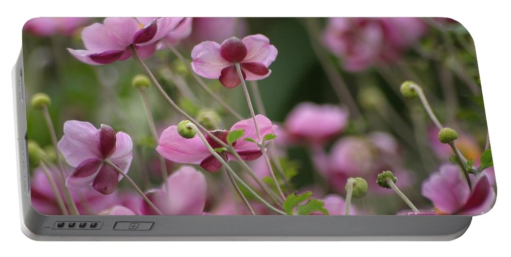 Floral Portable Battery Charger featuring the photograph Field Of Japanese Anemones by Living Color Photography Lorraine Lynch