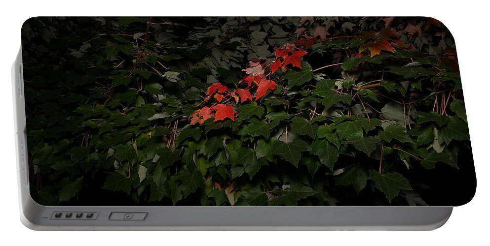 First Portable Battery Charger featuring the photograph First Fall Colors At Night by Mick Anderson