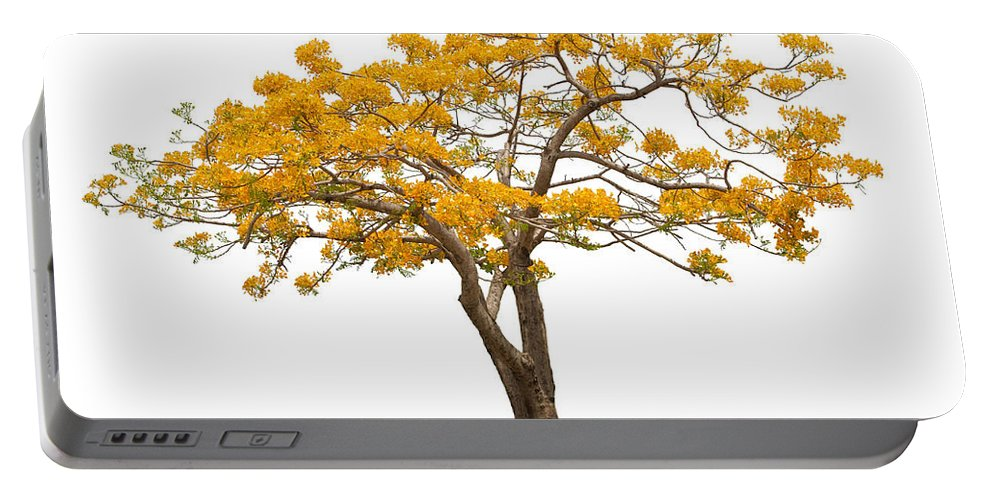 Africa Portable Battery Charger featuring the photograph Flam Of The Forest by Atiketta Sangasaeng