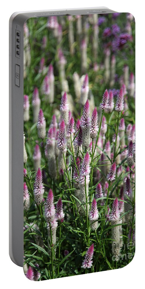 Botanical Portable Battery Charger featuring the photograph Flamingo Feather Flowers by Ted Kinsman