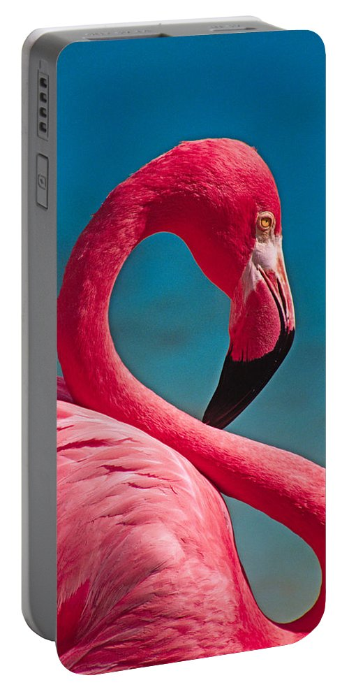 Flamingo Portable Battery Charger featuring the photograph Flexible Flamingo by Michele Burgess