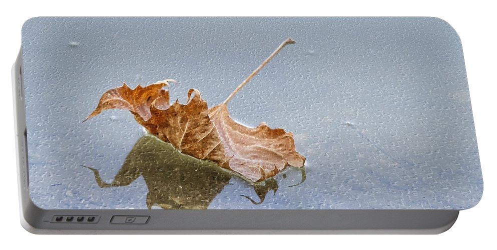 Leaf Portable Battery Charger featuring the photograph Floating Down Lifes Path 2 by Deborah Benoit