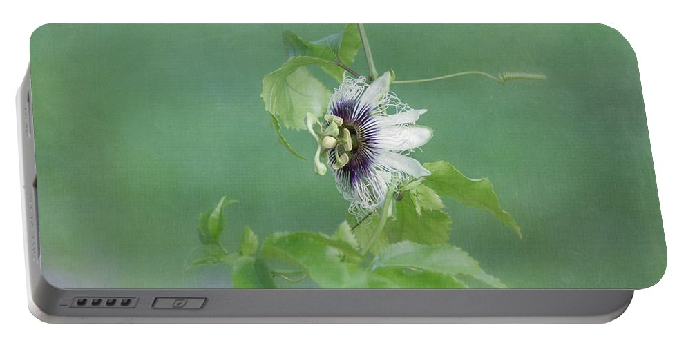 Purple Flower Portable Battery Charger featuring the photograph Floating Passion by Kim Hojnacki
