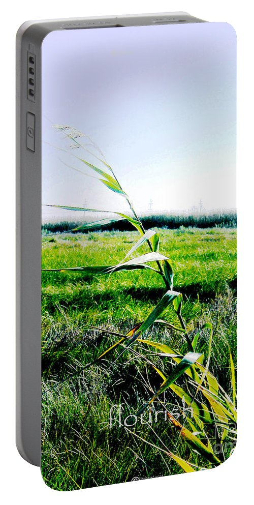 Grass Portable Battery Charger featuring the digital art Flourish by Lizi Beard-Ward