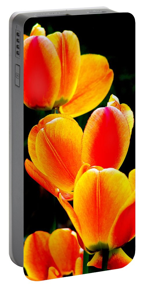 Portable Battery Charger featuring the photograph Flower 20 by Burney Lieberman