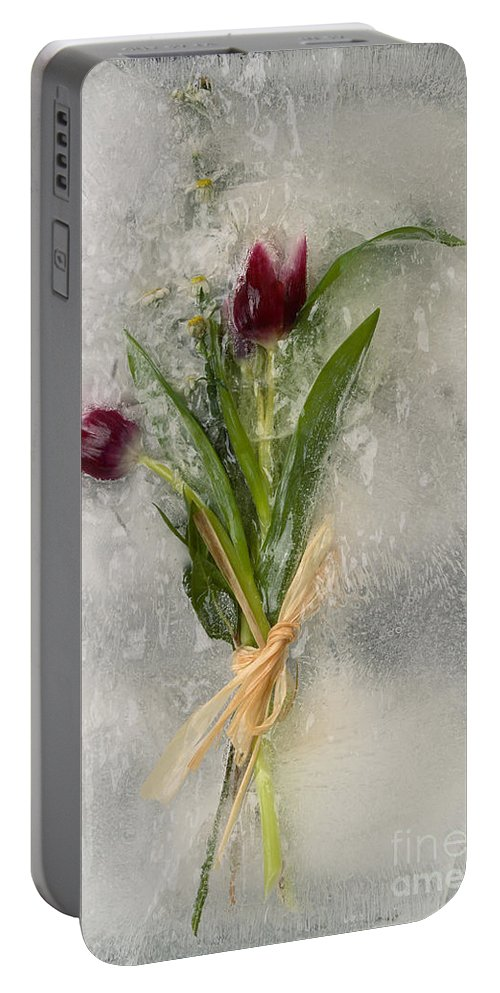 Ice Portable Battery Charger featuring the photograph Flowers Frozen In Ice by Ted Kinsman