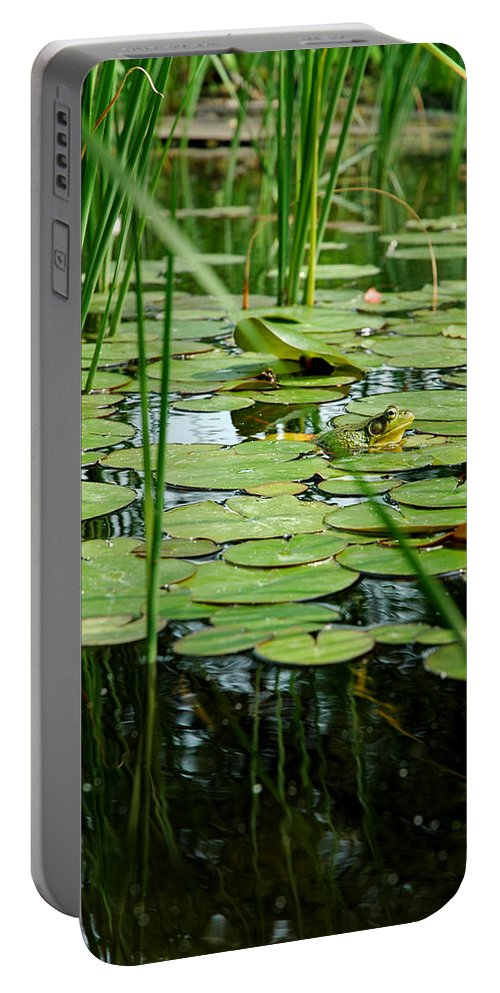 Usa Portable Battery Charger featuring the photograph Fly Beware by LeeAnn McLaneGoetz McLaneGoetzStudioLLCcom