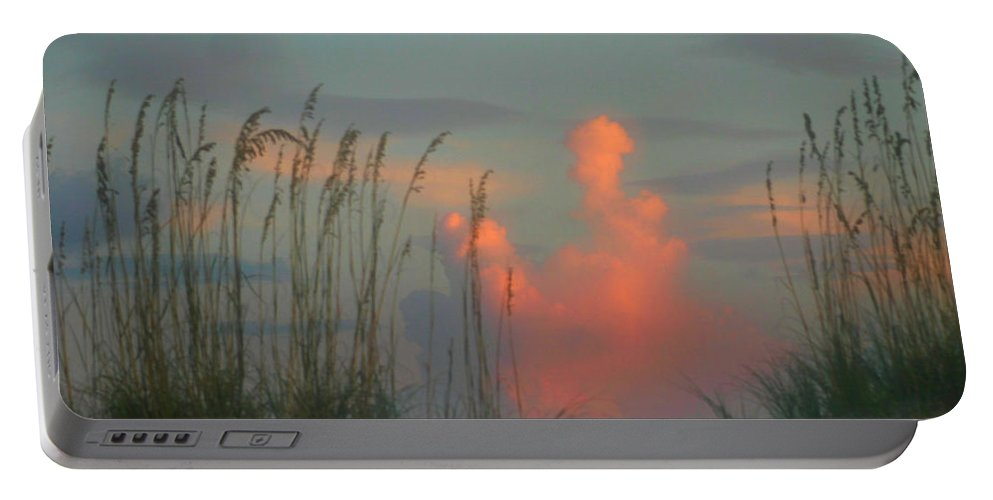 Sea Oats Portable Battery Charger featuring the photograph Foggy Oats by Kristin Elmquist