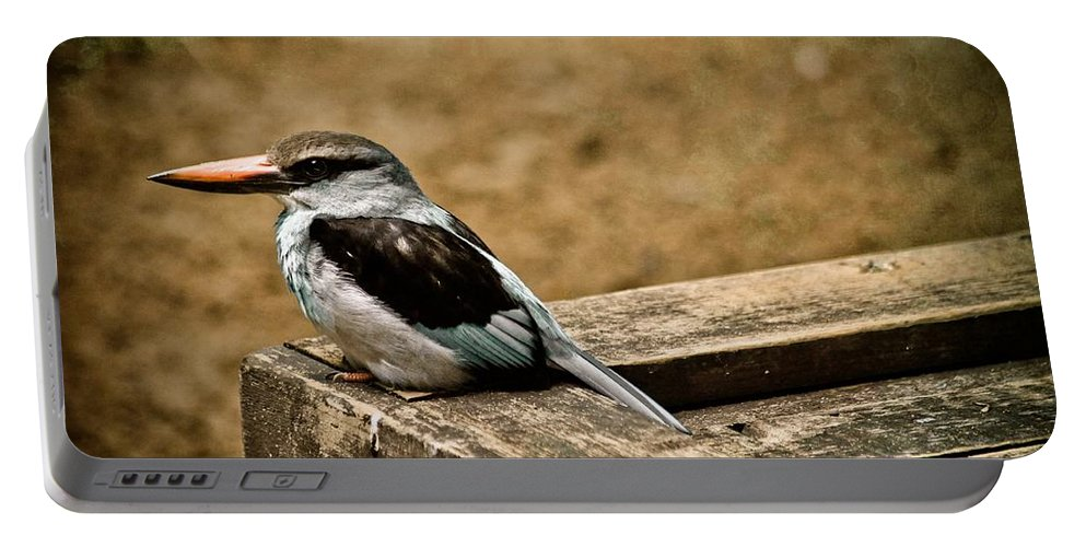 Bird Portable Battery Charger featuring the photograph Follow Your Nose by Trish Tritz