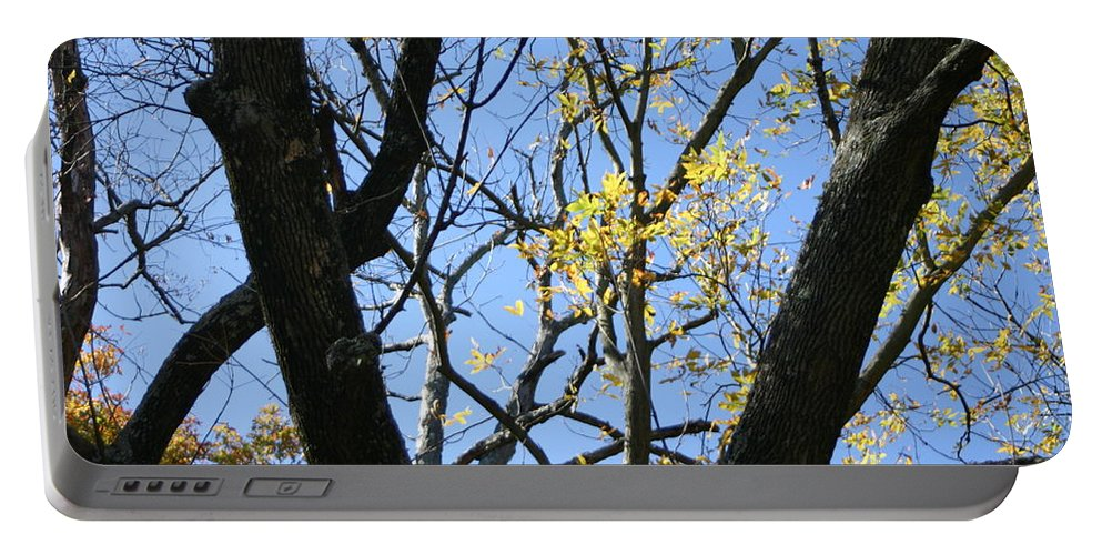 Blue Sky Portable Battery Charger featuring the photograph For The Trees by Leann DeBord