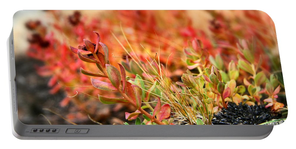 Forest Foliage Portable Battery Charger featuring the photograph Forest Folaige by Chris Brannen