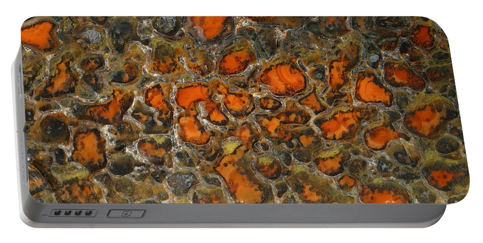 Dinosaur Bone Portable Battery Charger featuring the photograph Fossilized Dinosaur Bone by Ted Kinsman