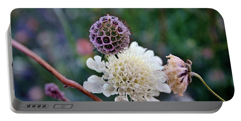 Flowers Portable Battery Charger featuring the photograph Friends In The Garden by Ellen Heaverlo