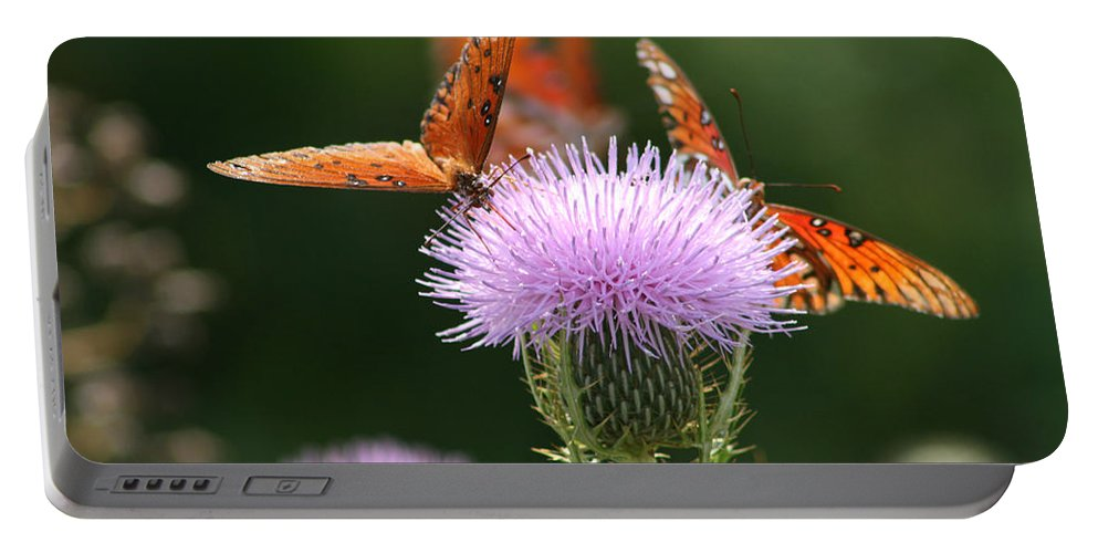 Euphydryas Aurinia Portable Battery Charger featuring the photograph Fritillary Wings And Thistles by Kathy Clark