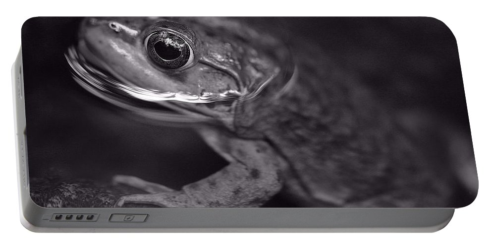 Frog Portable Battery Charger featuring the photograph Frog by David Rucker
