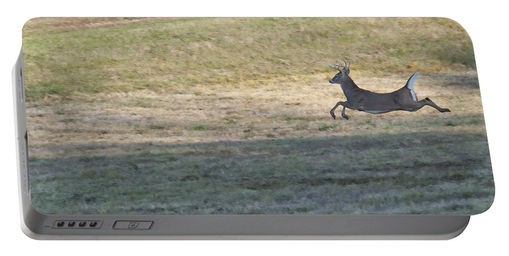Deer Portable Battery Charger featuring the photograph Full Speed by David Arment