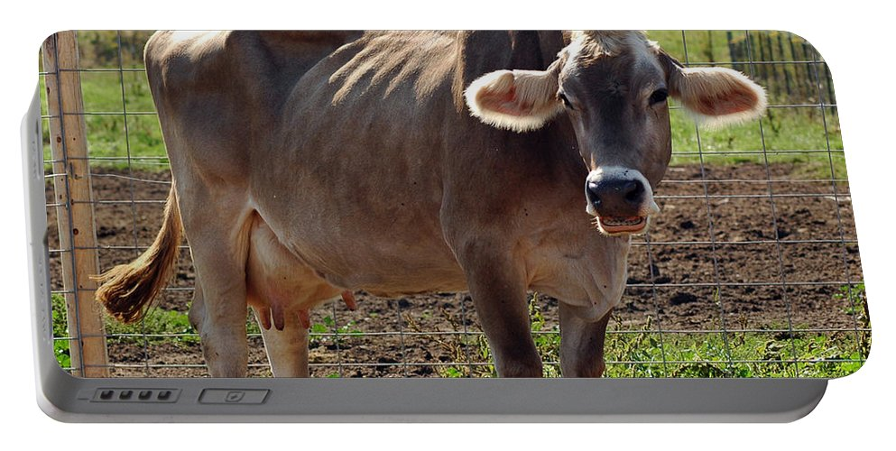 United_states Portable Battery Charger featuring the photograph Gasping Cow by LeeAnn McLaneGoetz McLaneGoetzStudioLLCcom
