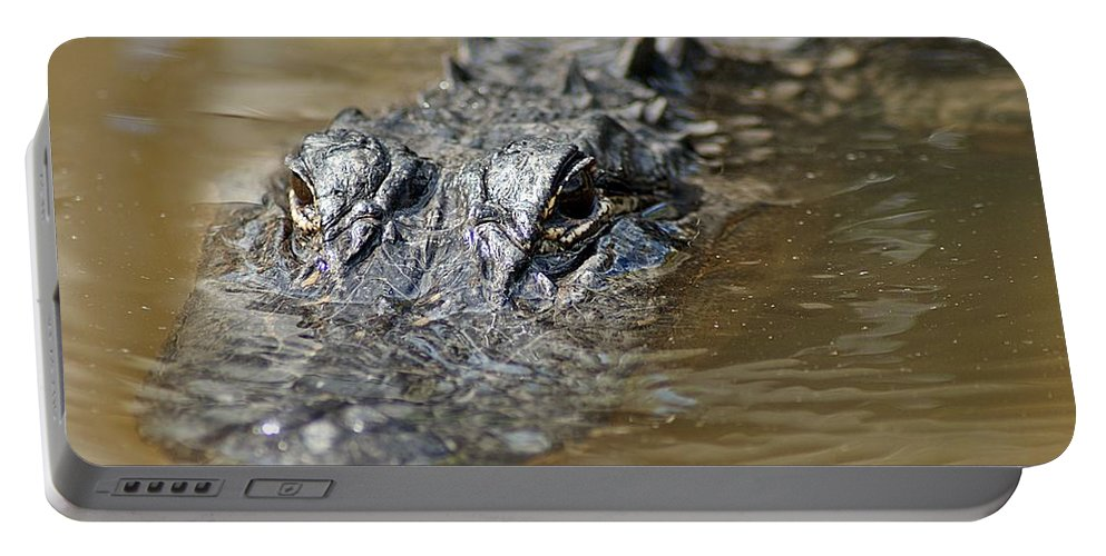 Gator Portable Battery Charger featuring the photograph Gator 3 by Joe Faherty