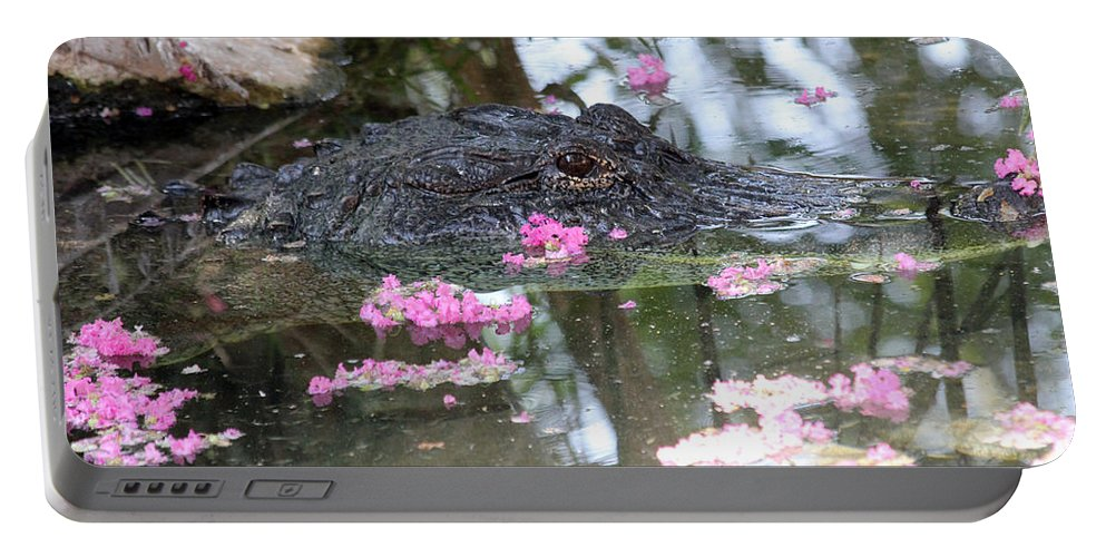Eye Portable Battery Charger featuring the photograph Gator Among Crape Myrtle by Alycia Christine