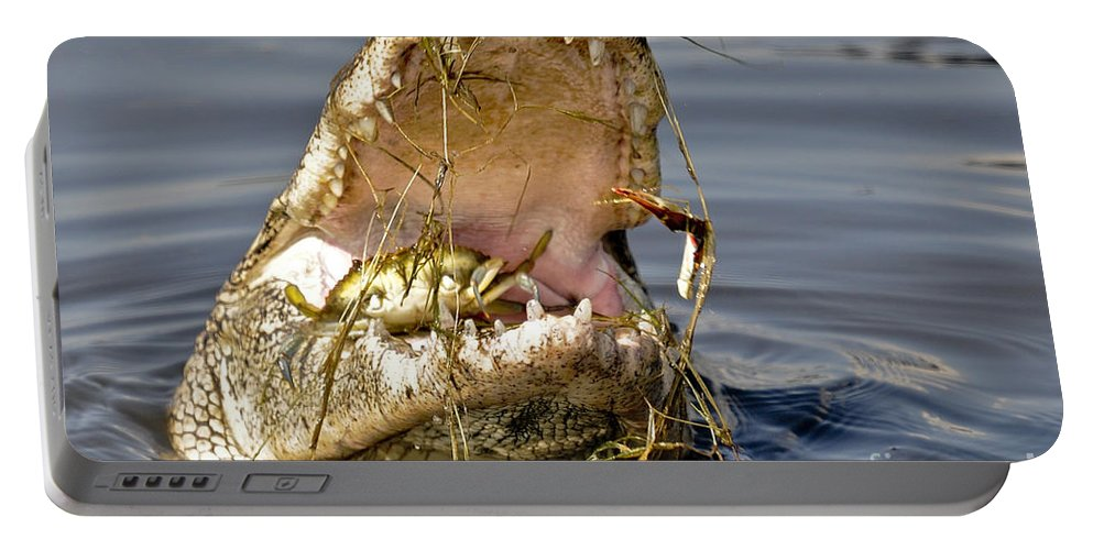 Alligator Portable Battery Charger featuring the photograph Gator Grabs Lunch by TJ Baccari