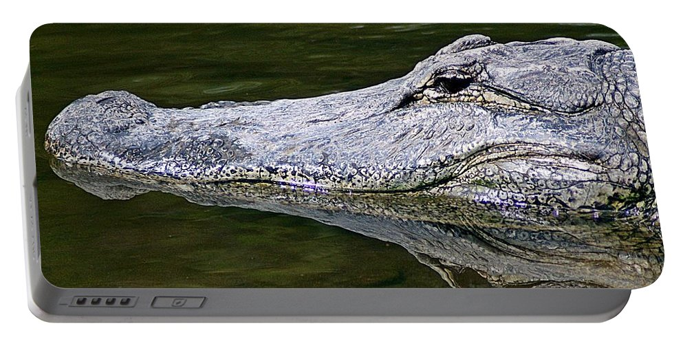 Gator Portable Battery Charger featuring the photograph Gator5 by Joe Faherty