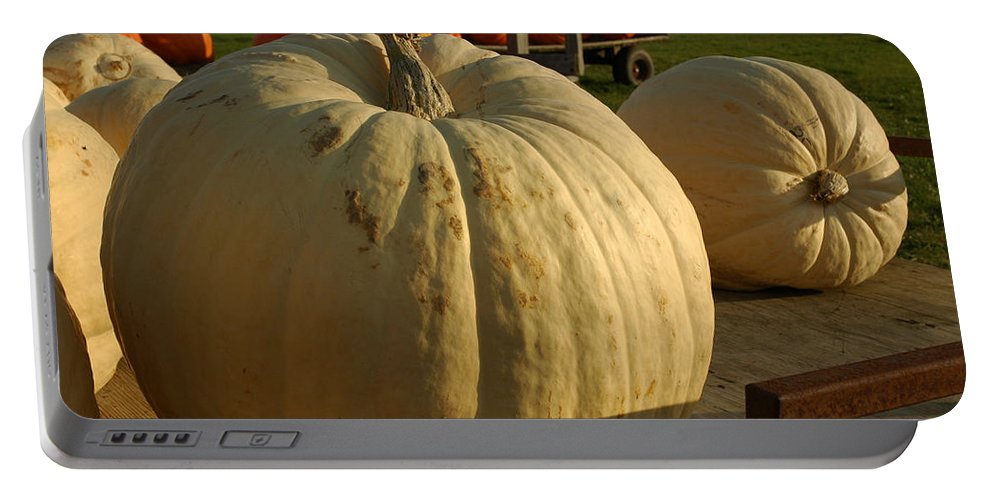 Food And Beverage Portable Battery Charger featuring the photograph Ghost Pumpkin by LeeAnn McLaneGoetz McLaneGoetzStudioLLCcom