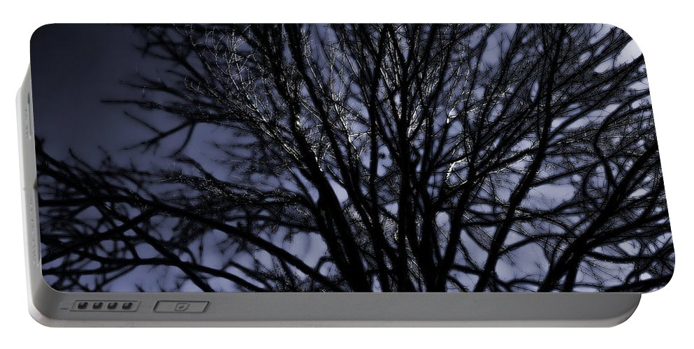 Tree Portable Battery Charger featuring the photograph Ghost Tree by Scott Wood