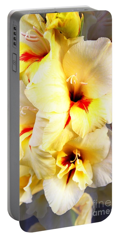 Gladiolus Portable Battery Charger featuring the photograph Gladiolus Mirage by Ms Judi