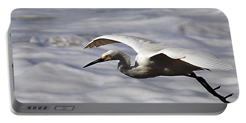 Egret Portable Battery Charger featuring the photograph Gliding Snowy Egret by Joe Schofield