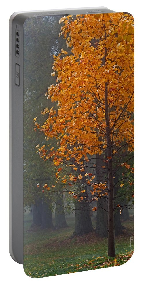 Fog Portable Battery Charger featuring the photograph Glowing In The Fog by Barbara McMahon