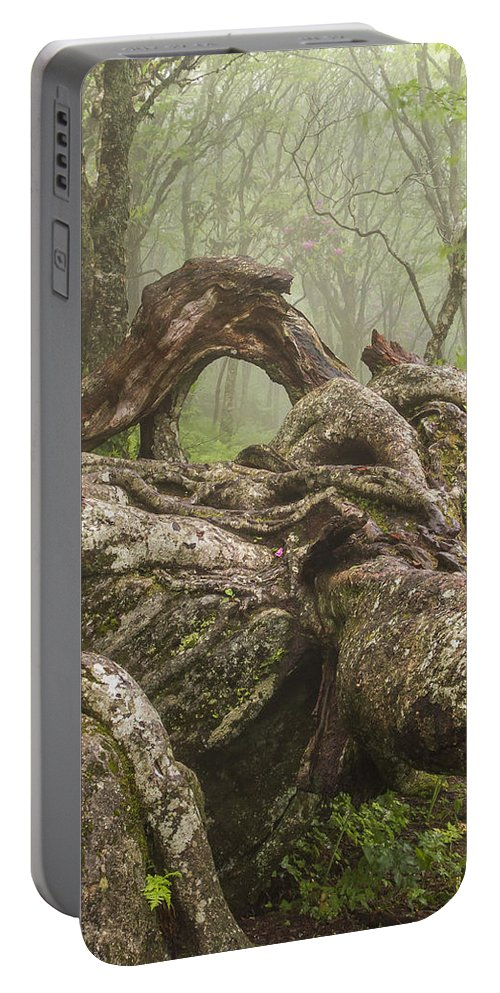 Gnarly Portable Battery Charger featuring the photograph Gnarly Old Tree In Fog Along The Blue Ridge Parkway by Bill Swindaman